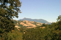 Sonoma Mountains, Sonoma County